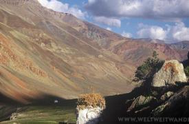 Testha-village-Ladakh